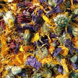 Mix kwiatowy z hibiskusem