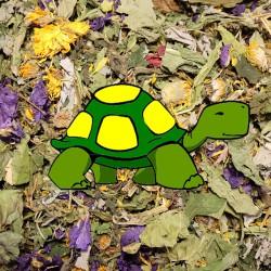 Mieszanka ziół dla żółwi...